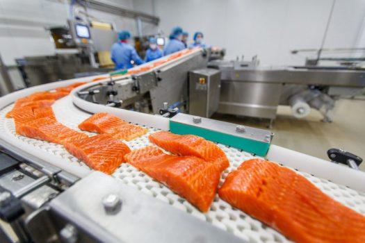 Σολομός ιχθυοτροφείου: Είναι όντως η πιο τοξική τροφή;