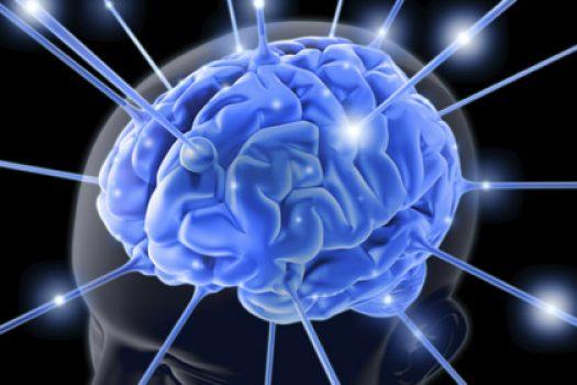 Προστατεύει τη μνήμη: ποιο το φάρμακο της φύσης