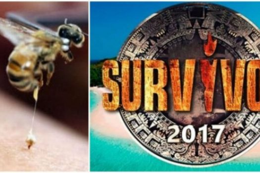Φρίκη στο Survivor: Σφήκα τσίμπησε παίκτη στο… πeος και έτρεχε από τον πόνο, ποιος είναι [video]